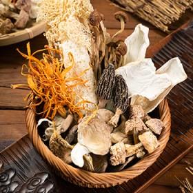 七彩菌汤包干货煲汤食材料菌菇包