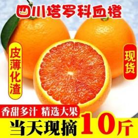 10斤血橙红橙桔子橙子柑橘