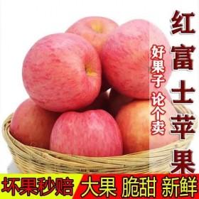 10斤冰糖心红富士苹果