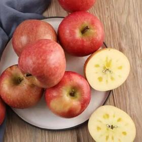 10斤冰糖心红富士苹果新鲜水果