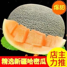 山东头茬新疆哈密瓜10斤西州蜜瓜整箱孕妇水果香脆甜