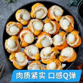 6斤扇贝肉真空包装冷冻新鲜即食大号扇贝肉带黄无沙鲜
