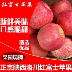 10斤红富士冰糖心苹果