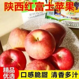 10斤陕西洛川脆甜红富士苹果