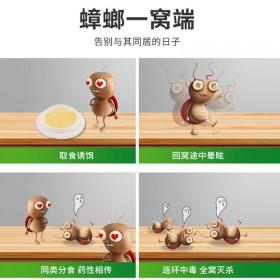 蟑螂家用一窝端卧室厨房蟑螂诱杀胶饵