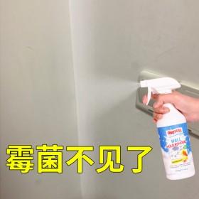 兴洽墙面除霉剂去霉菌霉斑墙体清洁剂喷雾清洗剂
