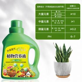 绿萝营养液植物通用型养花肥料发财树富贵竹水培花卉盆