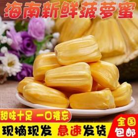 27斤海南三亚菠萝蜜
