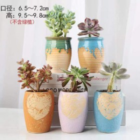 多肉老桩创意植物花盆陶瓷