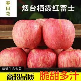 10斤红富士苹果应季新鲜水果