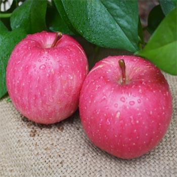 商家:洛川果然香苹果园